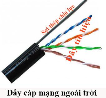 10-day-cap-mang-lan-bao-nhieu-tien-1-met