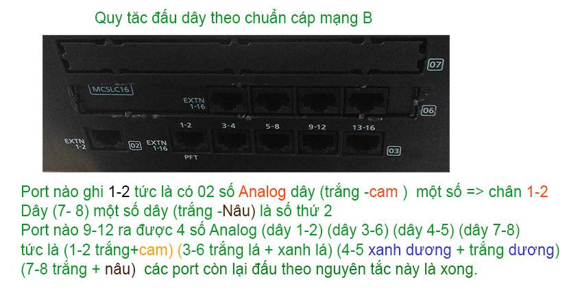 dau-day-cap-mang-lan-tong-dai-ns300